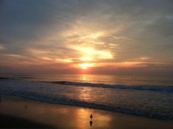 mens beach meditation and embodiment gathering